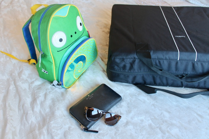 My Fab Five: travel essentials for a toddler